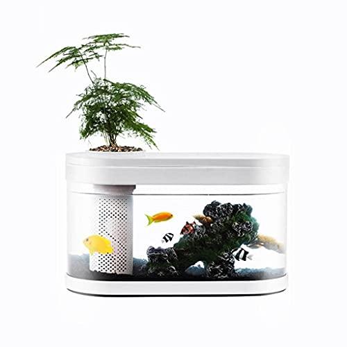 XYZMDJ Geometría Tanque de Peces Aquaponics Ecosistema Pequeño Jardín de Agua Ecológico Pecera Acuario Transparente