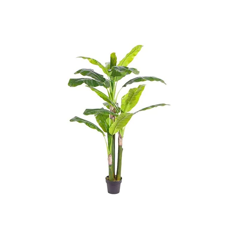 silk flower arrangements amerique gorgeous 5.7' musa basjoo banana tree artificial silk plant with uv protection, with nursery plastic pot, feel real technology, super quality, feet, green