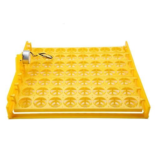 Incubadora de 56 Huevos, Bandeja giratoria automática para Huevos con Motor(220 V)