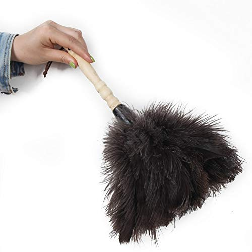 Ostrich Feather Duster, Car Duster with Wooden Handle for Blinds, Kitchen, Keyboard Office, Car, Small, 13 inch, Black.