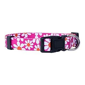 Native Pup Flower Dog Collar/Paisley Dog Collar (Small, Pink Daisy)