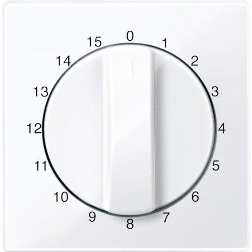 Merten 567425 centrale plaat voor tijdschakelaar gebruik 15 min, actief wit glanzend, systeem M