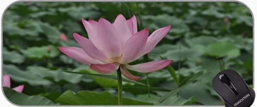 Diseño de Arte de Color Floral Lotus Lotus Gaming Mouse Pad, Lotus Laptop Ordenador portátil Teclado Teclado Mousepad