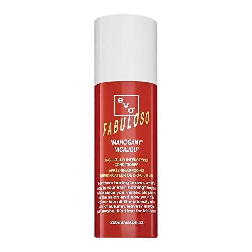 EVO Fabuloso Colour Intensifying Conditioner,...