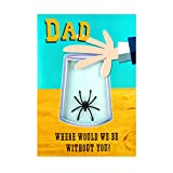 Father's Day Card for Dad from Hallmark - Spider Trapper Design