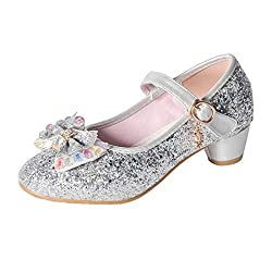 Silver Mary Jane Low Heels Shoes
