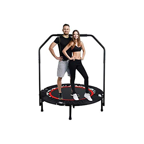 YWAWJ Trampoline for Kids and Adults, Outdoor Trampoline for Family School Entertainment