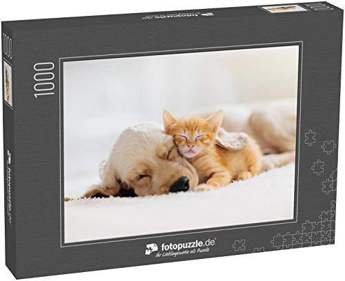 fotopuzzle.de Puzzle 1000 Teile Katze und Hund schlafen zusammen Kätzchen und Welpe Machen EIN Nickerchen Haustiere Tierpflege (1000, 200 oder 2000 Teile)