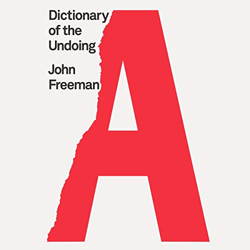 Dictionary of the Undoing  By  cover art