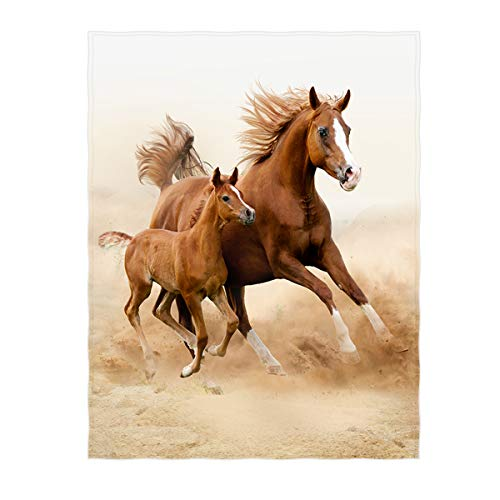 QH 60 x 80 Inch Two Beautiful Horse Pattern Super Soft Throw Blanket for Bed Sofa Lightweight Blanket for All Seasons