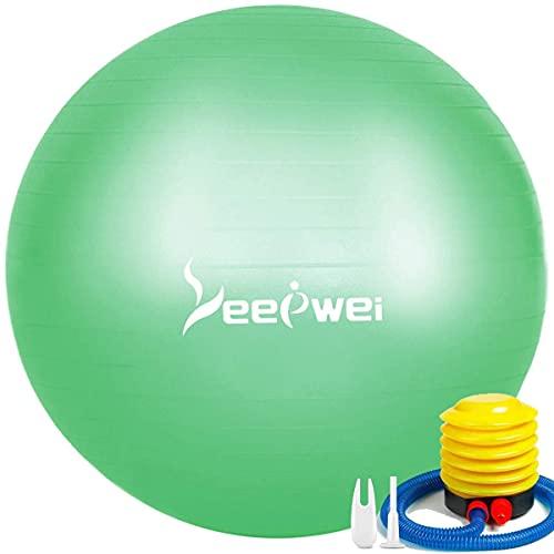 LEEPWEI バランスボール ヨガボール 空気入れ ボール ピラティスボール 厚い 環境にやさしい ジムボール エ...