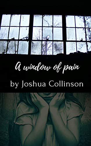 A window of pain (English Edition)