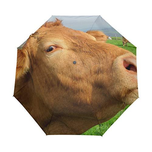 LUPINZ Paraguas de Vaca para césped, Plegable, Resistente al Viento, Compacto, Resistente...