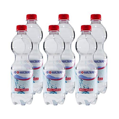 Bad Harzburger Naturelle Mineralwasser (6 x 0,5L)