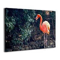Skydoor J パネル ポスターフレーム 赤い火鳥 インテリア アートフレーム 額 モダン 壁掛けポスタ アート 壁アート 壁掛け絵画 装飾画 かべ飾り 30×20
