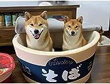日本のインスタントラーメン小屋柴犬ネット有名人同じインスタントラーメン猫の巣クッションうどんカップ麺巣INS風ペット巣,D,L