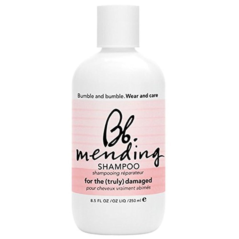 ひらめきピンポイントマッサージバンブルアンドシャンプー250ミリリットルを補修バンブル (Bumble and bumble) (x2) - Bumble and bumble Mending Shampoo 250ml (Pack of 2) [並行輸入品]
