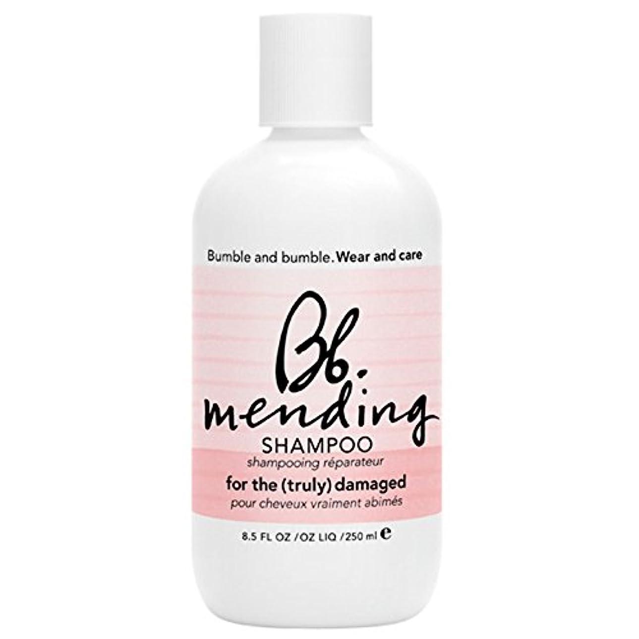 日曜日出力ジョグバンブルアンドシャンプー250ミリリットルを補修バンブル (Bumble and bumble) - Bumble and bumble Mending Shampoo 250ml [並行輸入品]