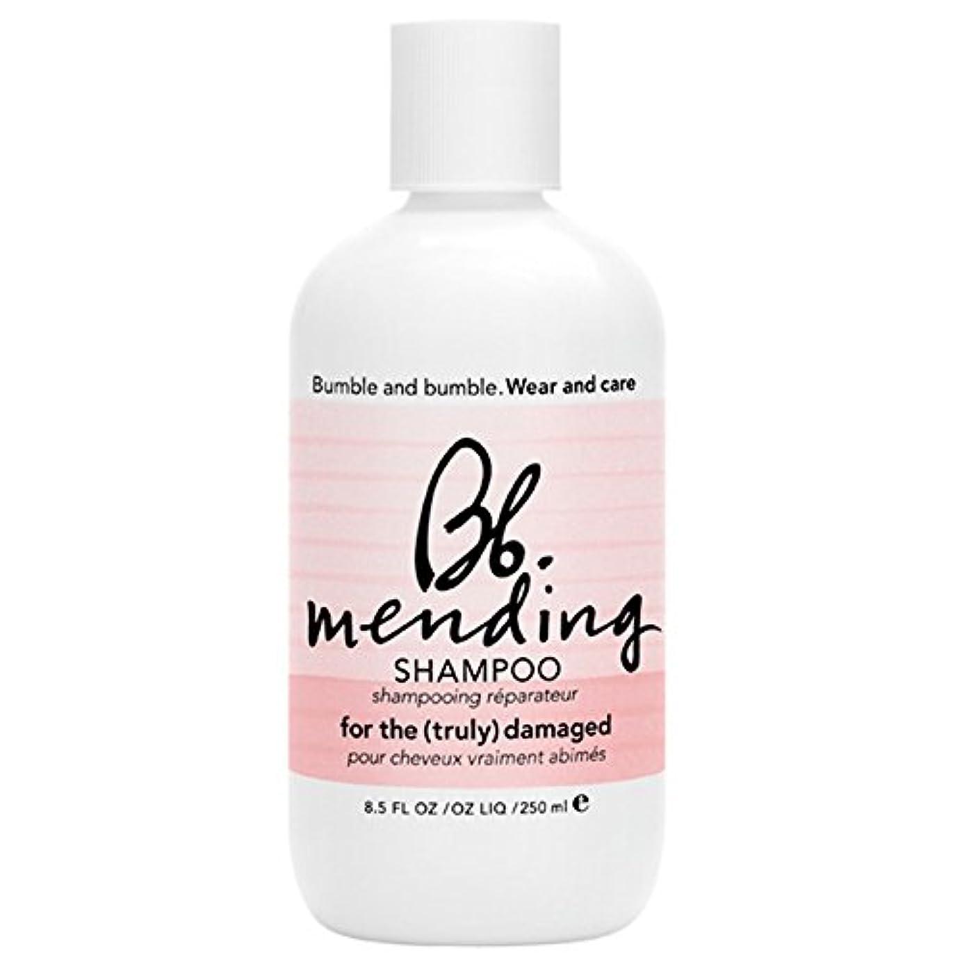 貝殻広まった谷バンブルアンドシャンプー250ミリリットルを補修バンブル (Bumble and bumble) (x2) - Bumble and bumble Mending Shampoo 250ml (Pack of 2) [並行輸入品]