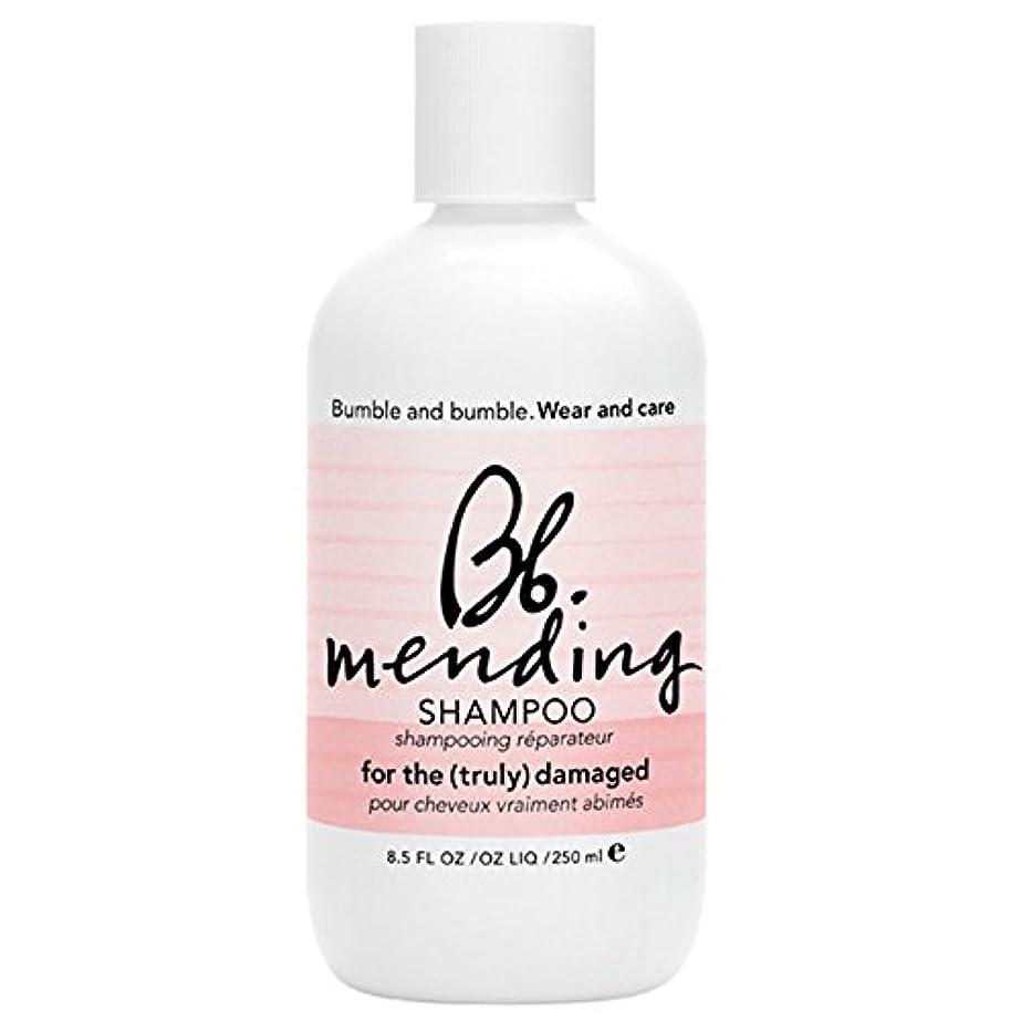 感心する交じる死にかけているバンブルアンドシャンプー250ミリリットルを補修バンブル (Bumble and bumble) - Bumble and bumble Mending Shampoo 250ml [並行輸入品]