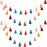 4 Pieces Tassel Garland Colorful Tassel Banner Decorative Wall Hanging for Home Decoration Wedding Birthday Baby Shower Party Supplies, Pre-Assembled(Tassel in 3.1 Inches)