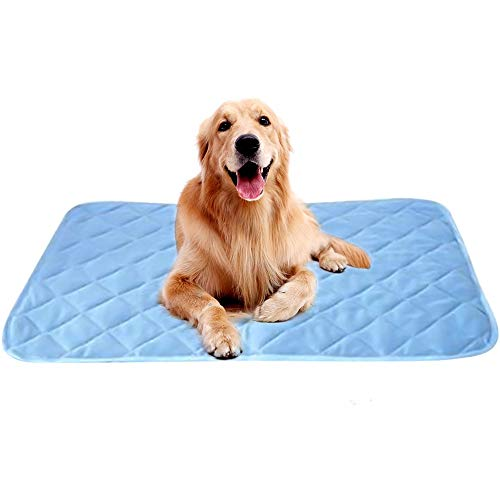 Intsun Cool Mat for Dogs XL, 39 X 27in Dog Cooling Crate Pad Washable Ice Silk Summer Cooling Blanket for Small Medium Large Pets Kennel Sleeping Outdoor & Home Use, Light Blue Bed Mats