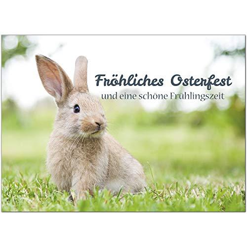 15 x Postkarten zu Ostern mit Umschlägen im Set/Osterkarten modern Oster Hase auf der Wiese/Osterpostkarten