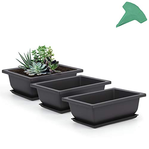 GROWNEER 3 Packs 6.5 Inches Bonsai Training Pots with 15 Pcs Plant Labels, Plastic Bonsai Plants Growing Pot for Garden, Yard, Office, Living Room, Balcony and More