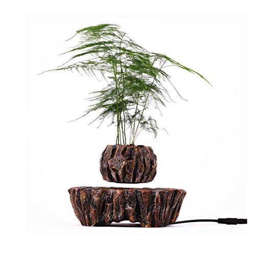 ZHTY ZHTYLevitating Luft-Bonsai-Topf, Creative Design Magnetic Suspension Floating Suspended Blumentopf für Topfpflanzen, Modell M005B-PW