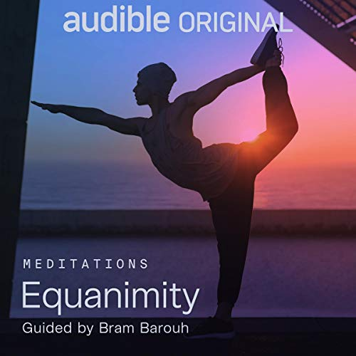 Equanimity audiobook cover art