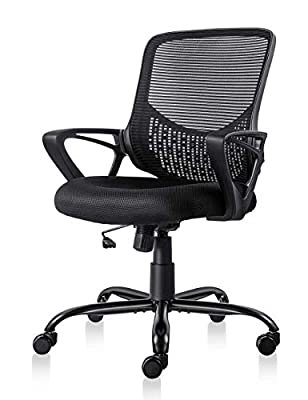 Ergonomic Office Chair Lumbar Support Mesh Chair Computer Desk Task Chair with Armrests