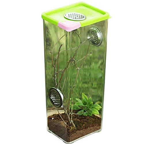 Reptilienzuchtbox,Terrarium Transportbox,Fütterungsbox Aus Acryl,Reptilien-Zuchtbox Transparent Belüftet,Terrarium Zubehör Transparente Reptilienzuchtbox,für Insektenreptilien Vogelspinnen Amphibien