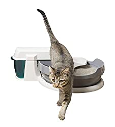 Petsafe Simply Clean Review Automatic Litter Box Reviews
