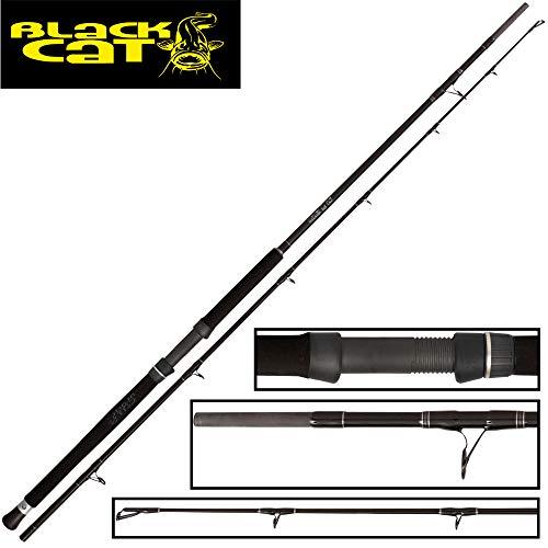 Black Cat Buster 2,80m 300-500g - Wallerrute zum Welsangeln, Angelrute zum Wallerangeln, Welsrute zum Angeln auf Waller