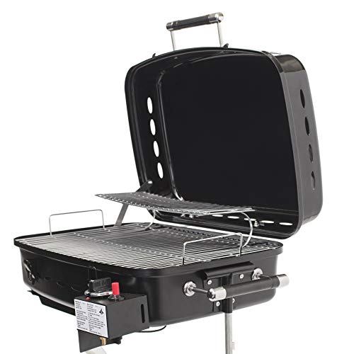 Flame King RV Mounted Motorhome Gas Grill