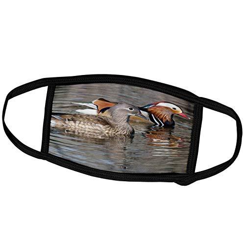 3dRose China, Beijing, Mating Mandarin Ducks on Lake - AS07 AGA0017 -. - Face Covers (fc_132361_3)