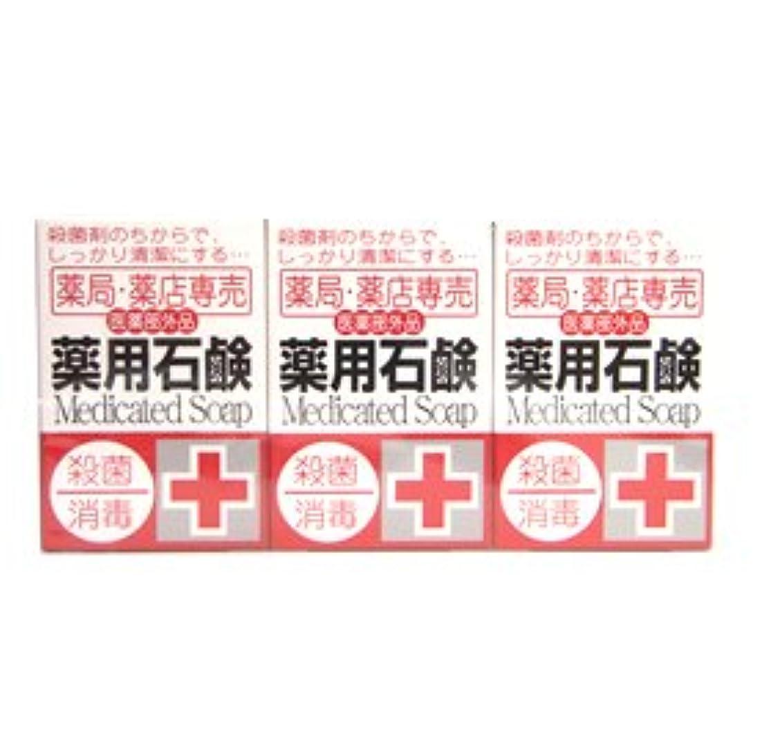製造鉛カタログ薬局?薬店専売 薬用石鹸 メディカルソープ 100g×3個入