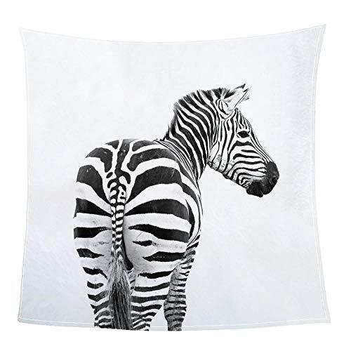 SHHSGZ Kinder Decke sofadecke plüsch Decke Flauschige kuscheldecke bettüberwurf für Sofa und Couch bettwäsche Wolldecke Zebra-M