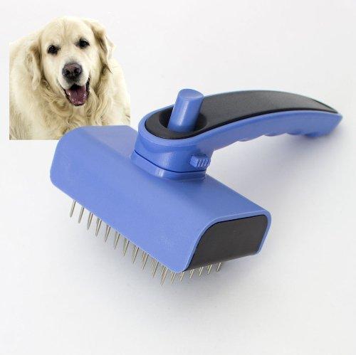 Selbstreinigende Hundebürste für Golden Retriever