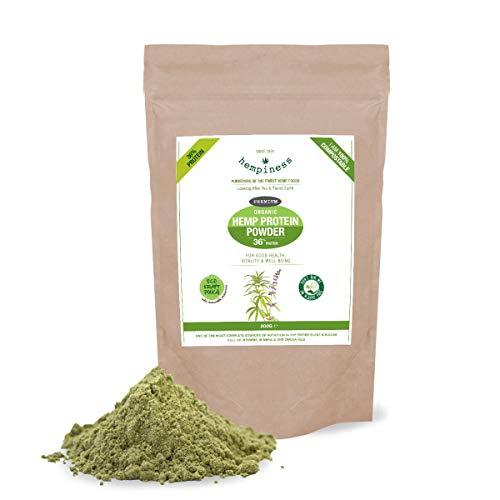 Hempiness Organic Premium Raw Hemp Protein Powder 500g