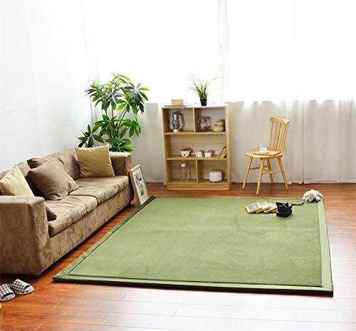OHHCO Alfombra de refrigeración para sala de estar, dormitorio, ventana, de terciopelo coral, espuma viscoelástica, 200 x 260 cm, para sala de estar (tamaño: 190 x 240 cm)