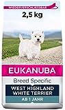 Eukanuba Breed Specific West Highland Terrier Trockenfutter - optimal auf die Rasse abgestimmtes Premium Hundefutter mit Huhn, 2.5 kg