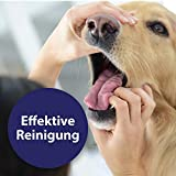 Quiko Canosept Zahnpflege Spray für Hunde, 100 ml - 3