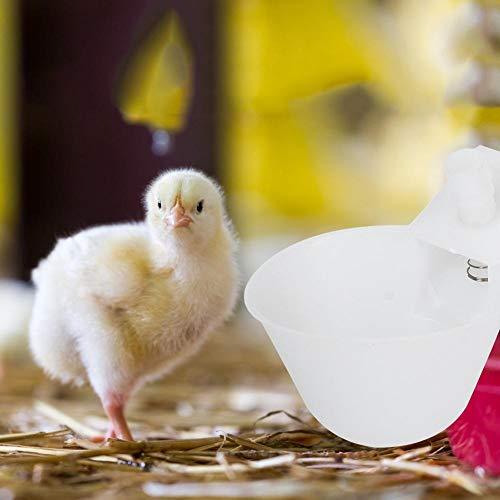 Huakii 【Cadeau d'Avril】 Pigeon - Bebedero automático de 12 Piezas para pájaros, Tazas para pájaros, alimentación de codornices para bebederos de pájaros, jaulas para pájaros