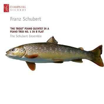 Schubert: 'The Trout' Piano Quintet in A - Piano Trio No. 1 in B Flat