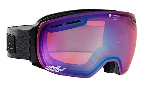 ALPINA GRANBY Skibrille, Unisex– Erwachsene, anthracite, one size