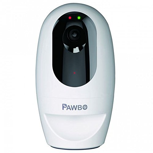 Pawbo+ Videocamera Interattiva Wireless per Animali Domestici