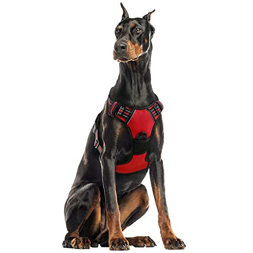 rabbitgoo Dog Harness, No-Pull Pet Harness with 2 Leash Clips, Adjustable Soft Padded Dog Vest, Reflective No-Choke Pet Oxford Vest with Easy Control Handle for Large Dogs, Red, XL