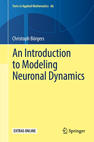 An Introduction to Modeling Neuronal Dynamics (Texts in Applied ...
