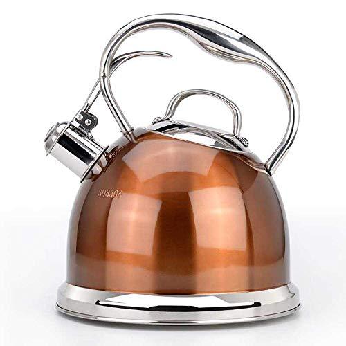 Home Sifflet Kettle - 3 L, Acier Inoxydable, pour Plaque de Cuisson ou Plaque de Cuisson, Couleur café Clair